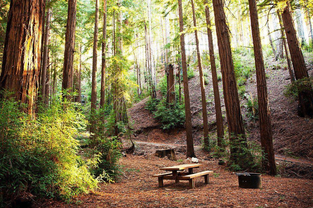 best camping california big sur